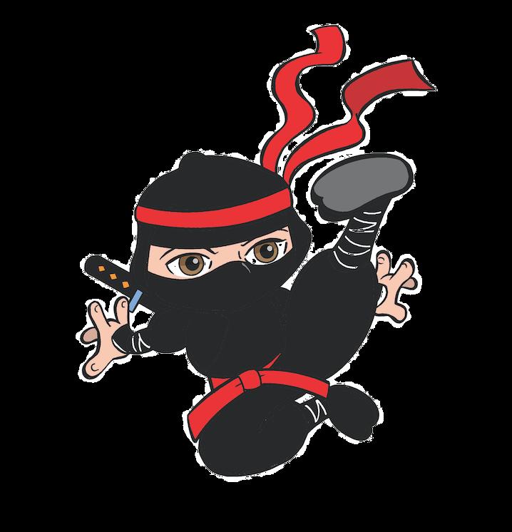 Ninja kicx gloucester